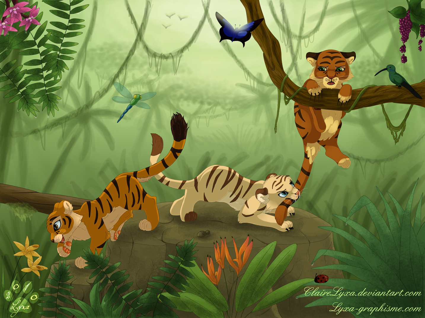 Cute Lion Cubs Hd Wallpapers Dessin Trois Tigrons Qui Jouent Lyxa Graphisme