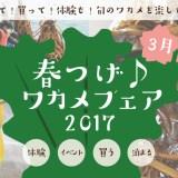 歌津でワクワク春つげ♪ワカメフェア2017