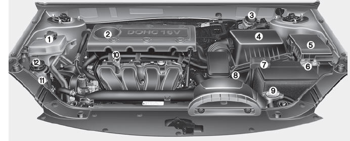 Kia Optima Engine compartment - Maintenance - Kia Optima Owners Manual