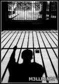 السجن عاماً وغرامة 10 آلاف لصاحب دكتوراه مزيفة