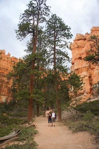 Bryce canyon utah 17