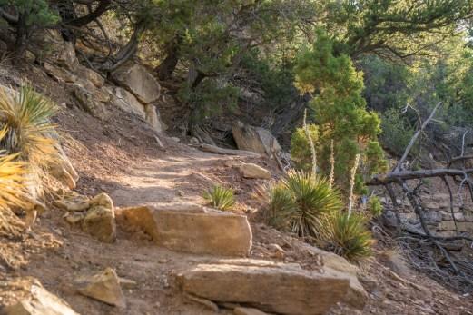 Black Canyon of the Gunnison - National Park - Colorado - road trip Etats-Unis - North Vista Trail sur le chemin de bon matin