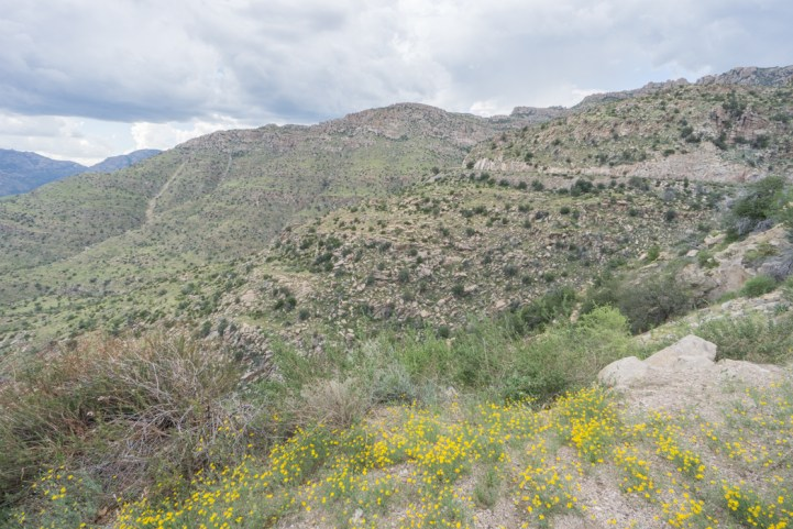 Tucson Arizona - mt lemmon 1