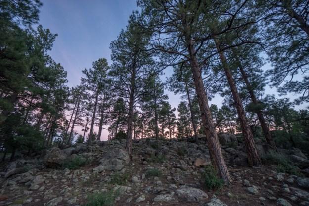 Apache Trail Arizona-20