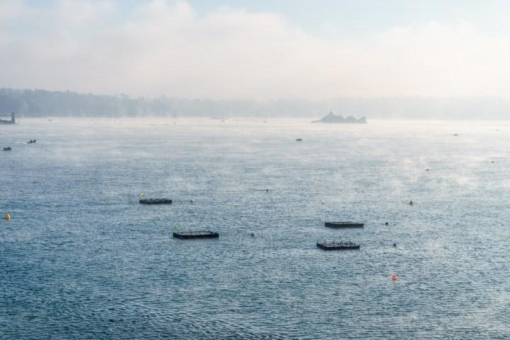 bretagne-sunset-et-brouillard-17