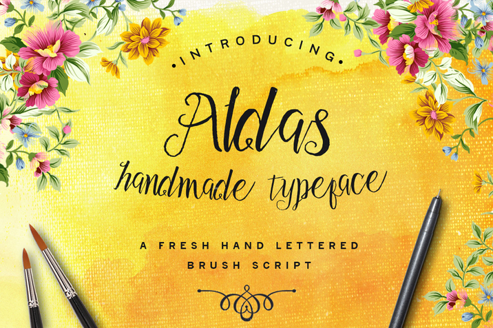 Creativemarket_Aldas_Typeface_and_Illustration_Pack_196742_cap01