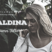Maldina autumn filters ps actions 392109 icon