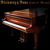Imperfect samples steinway walnut concert grand pro logo icon