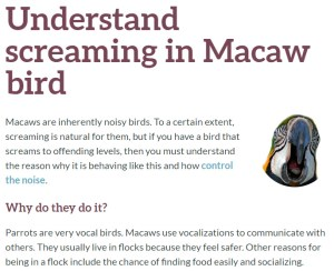 screaming parrots language