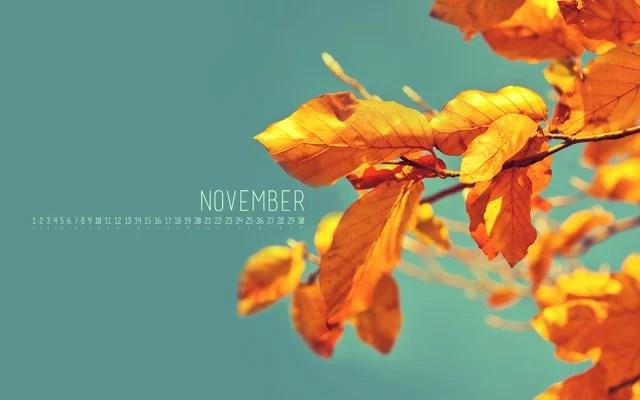 Iphone Pretty Wallpaper Wallpaper Of The Week November Goodness Macgasm