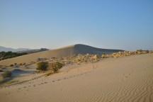 Patara: ..ist vor allem berühmt für seine großen Dünen