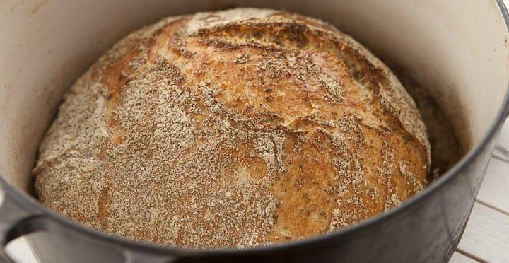 Oat No Knead Bread