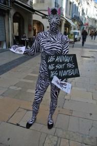 campagne-marketing-lush-lutte-contre-les-tests-sur-les-animaux-Les-animaux-ne-sont-pas-des-manteaux