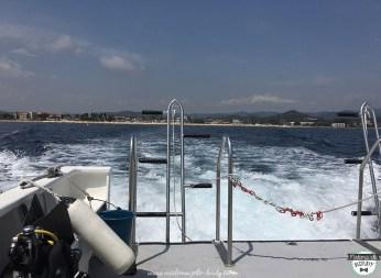 snorkeling-plongee-DUNE-var-la-londe-bapteme-toulon-blogueuse-varoises6