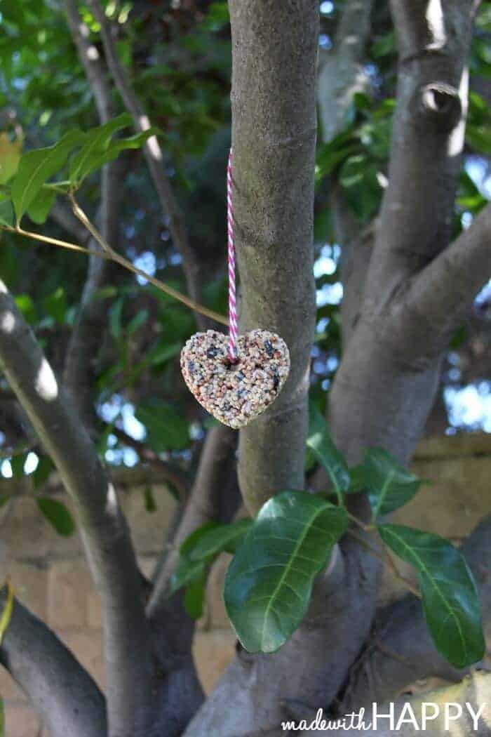 hanging-birdseed-feeder