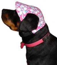 Dog Hats - Mad Mutt