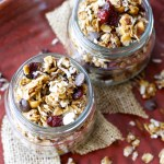 Dark Chocolate Cranberry Granola
