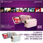 3.0型 TFTカラー液晶モニタ搭載 HD画質 デジタルビデオカメラ GHV-DV30HDLX ピンク