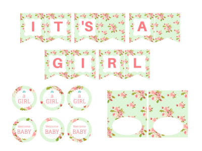 girl-mint-shabby-chic-baby-shower