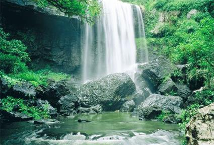Athirapally Falls Wallpapers Cairns Les Excursions Incontournables Et Insolites
