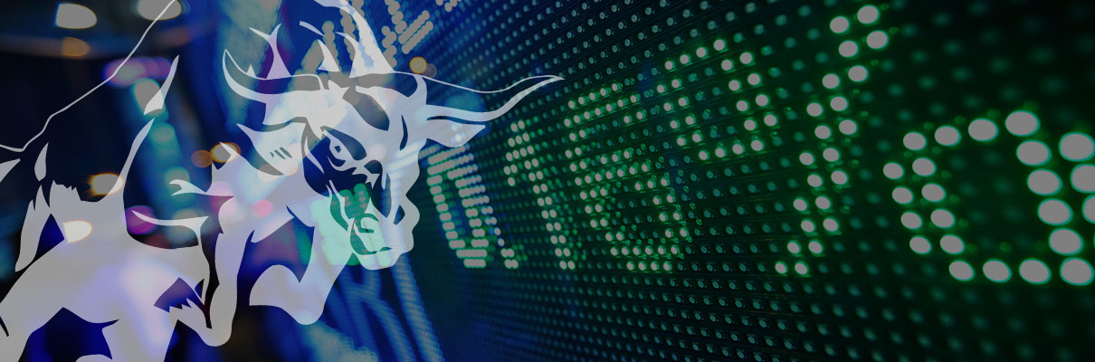 forex-trading-bull