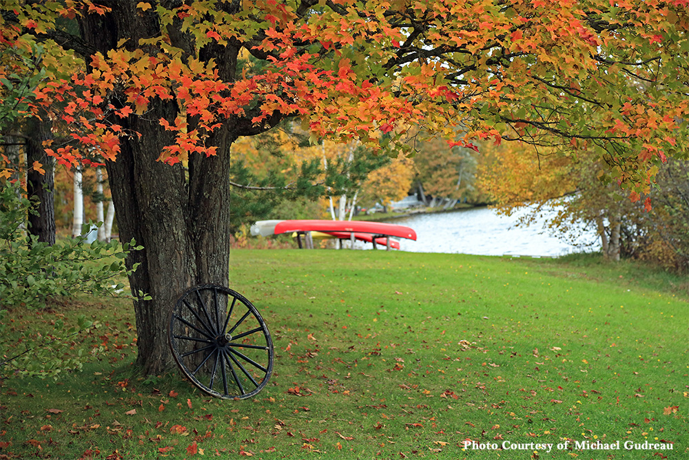 Maine Fall Wallpaper Mainefoliage Com Photo Gallery
