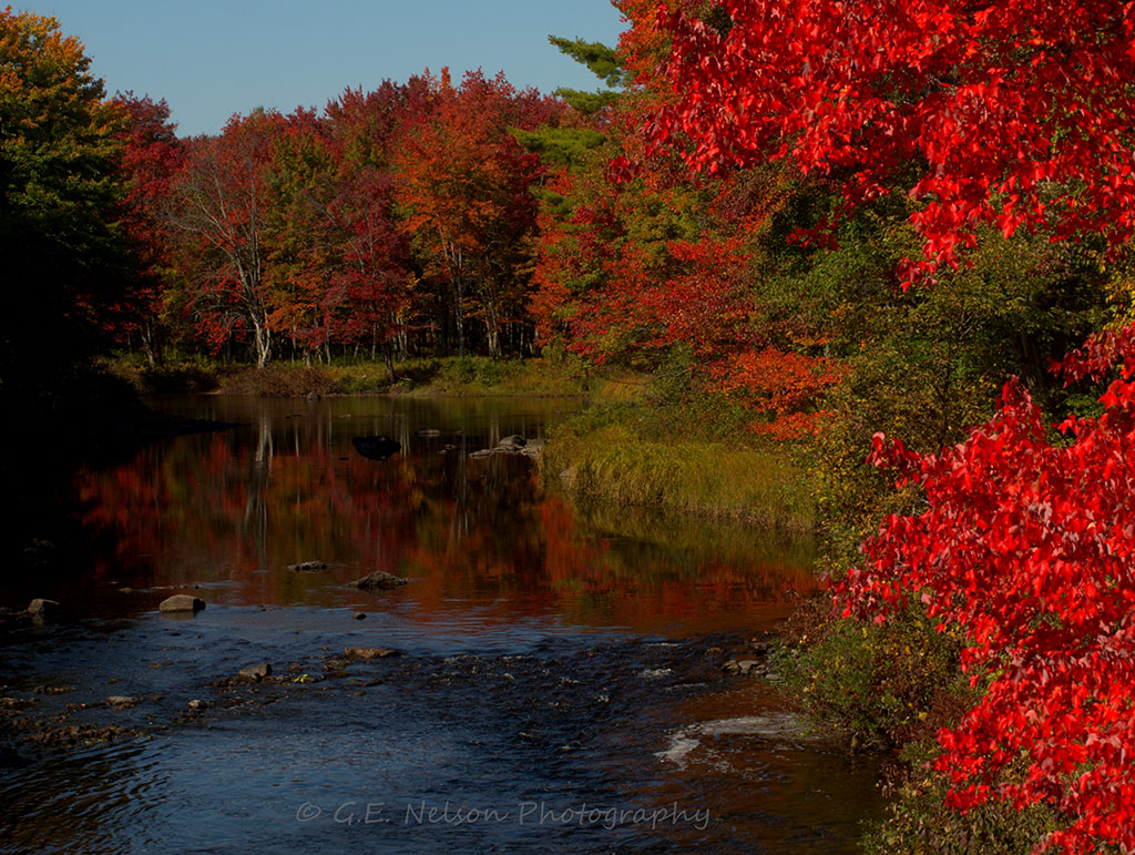 Maine Fall Foliage Wallpaper Mainefoliage Com Photo Gallery The Best Of The Years Past