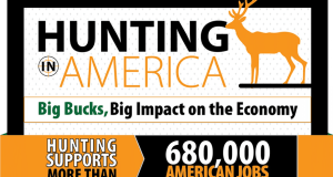 Impact of the American Economy from Hunting