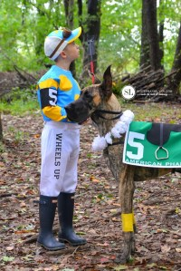 17 DIY Pet Costume Ideas that are Hilariously CUTE!