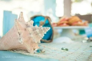 Under the Sea Birthday Party Details