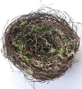DIY Bird Nest
