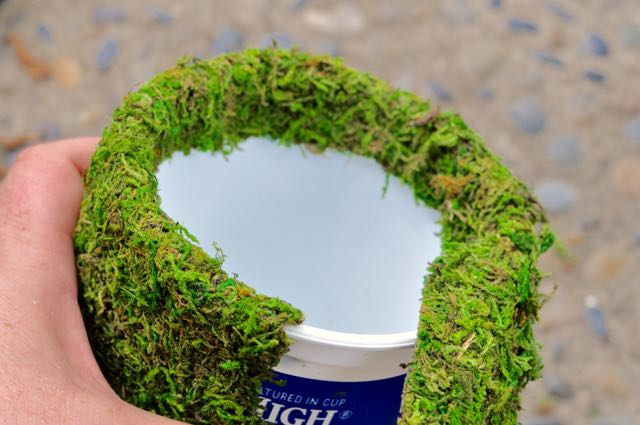 Moss Planter Recycled Craft