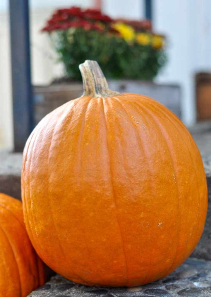 Decorating the porch with pumpkins for fall