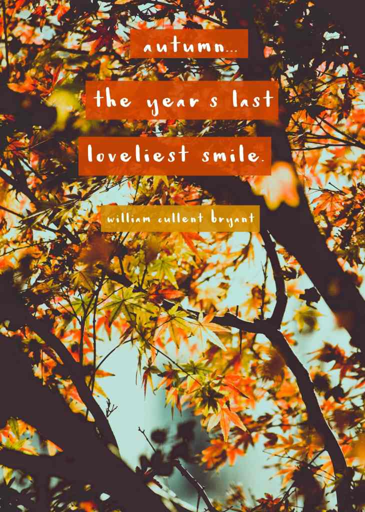 """""""Autumn... the year's last loveliest smile.""""- Fall quote"""