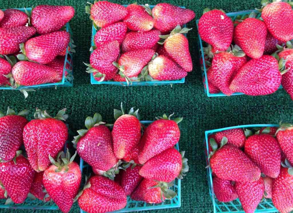 California grown strawberries at the Farmer's Market
