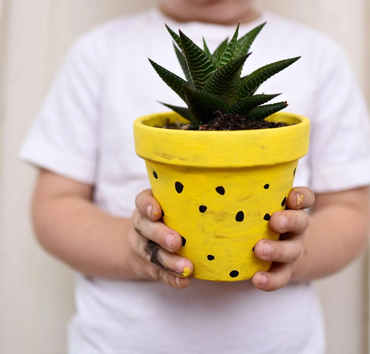 Diy Planters Diy Pineapple Planters Make Life Lovely