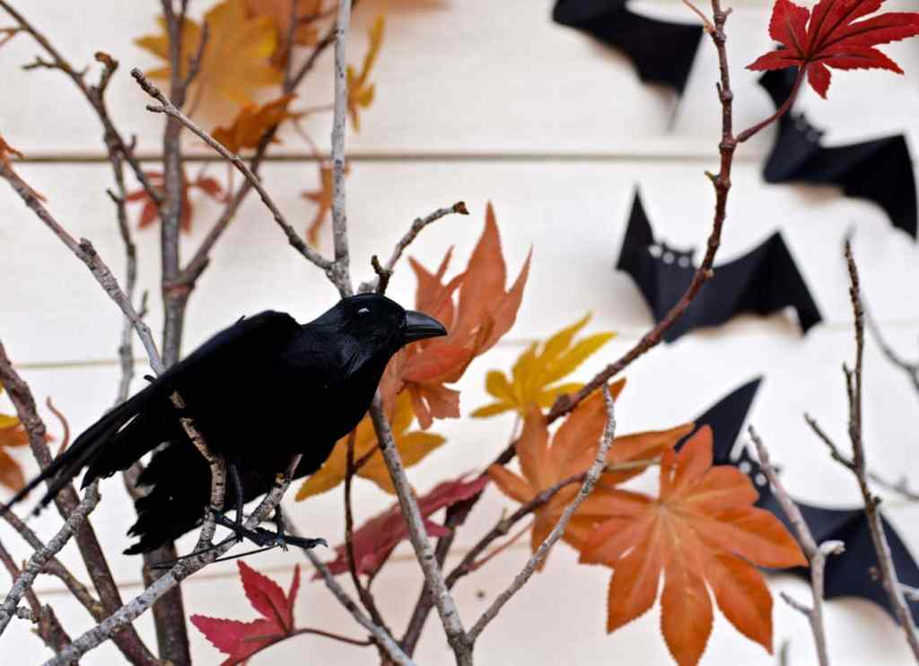 Halloween party decorations raven