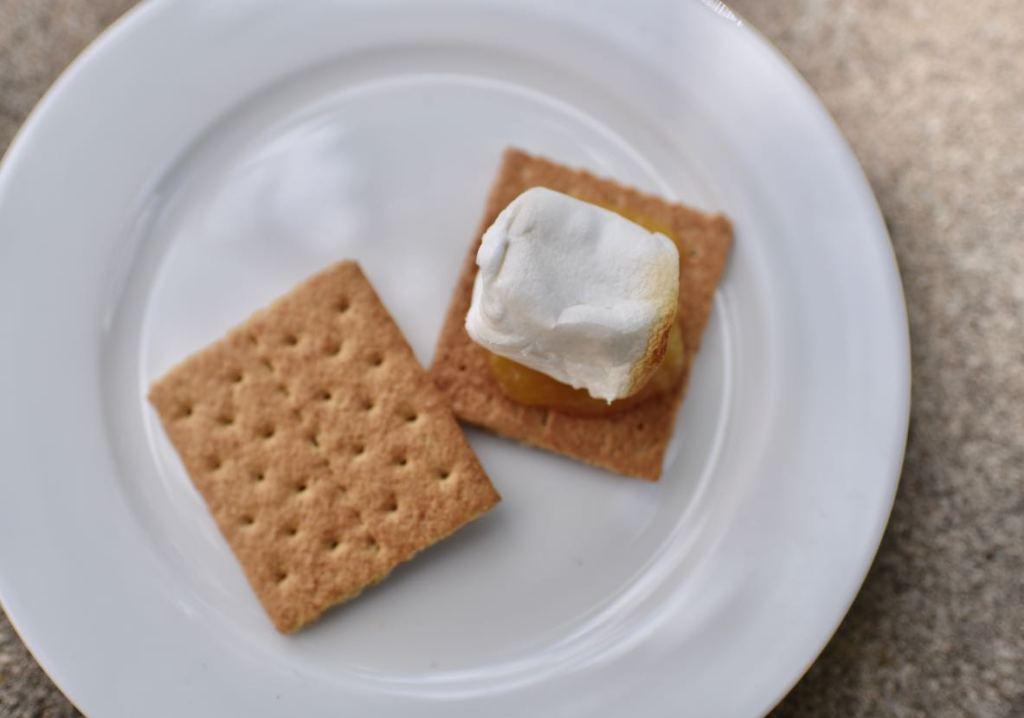 Easy lemon meringue s'mores recipe