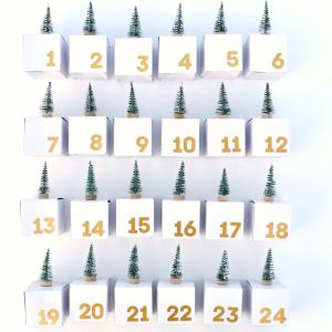 Advent Calendar Boxes DIY for Giving This Christmas
