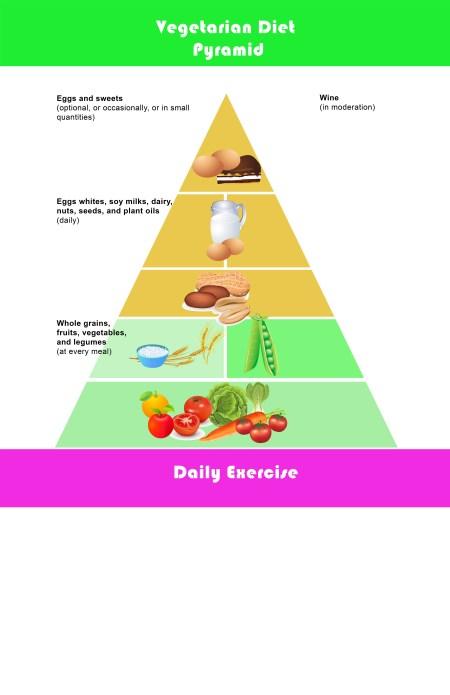 Empty Food Pyramid Chart