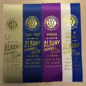 Off to a great start today at albanykennelclub juniorshowmanship Vizslahellip