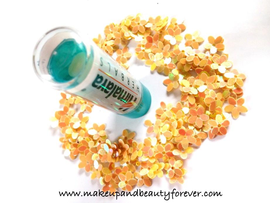 Himalaya Herbals Intensive Moisturizing Cocoa Butter Lip Balm Review 2