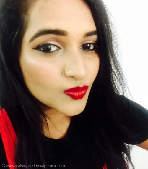 LAQA Co Fat Lip Pencil Palate Cleanser Review Swatches Astha goel mbf asthambf