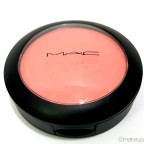 MAC Fleur Power Blush Review Swatches Makeup Blog