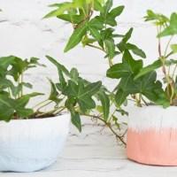 DIY Clay Pots