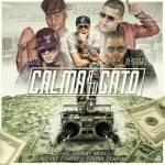 Cover: Endo Ft. Gadiel, Alexio La Bestia, Gotay El Autentiko Y Benny Benni – Calma a Tu Gato