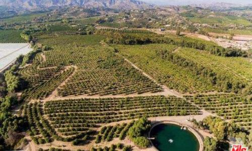 Agricultural land for sale ventura county