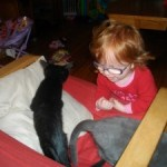 2 Cats, a Kid and a Messy House