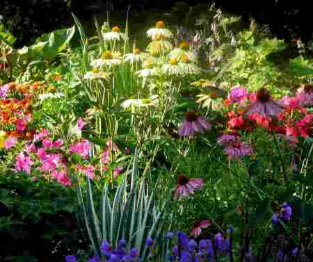 Outdoor Flower Garden Ideas