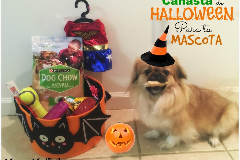 Canasta de Halloween para tu Mascota #ThrowBarkDogChow #ad